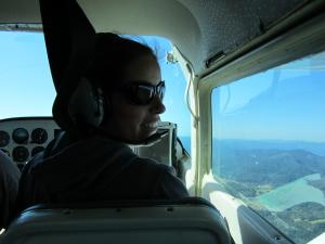 sage in plane